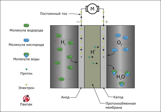 Принцип работы топливного элемента с протонообменной мембраной